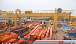 Double Beam Gantry Crane for Beam Handling